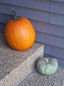 the 12 pounder and Cinderella pumpkins